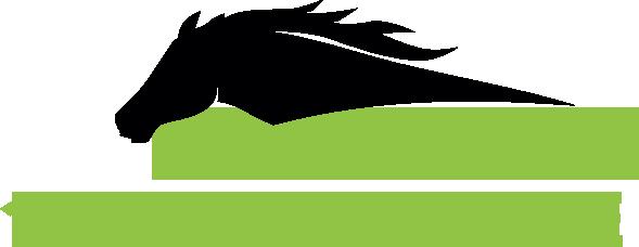 Logo 1pferd